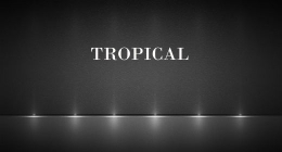 Tropical by Timtajmusic